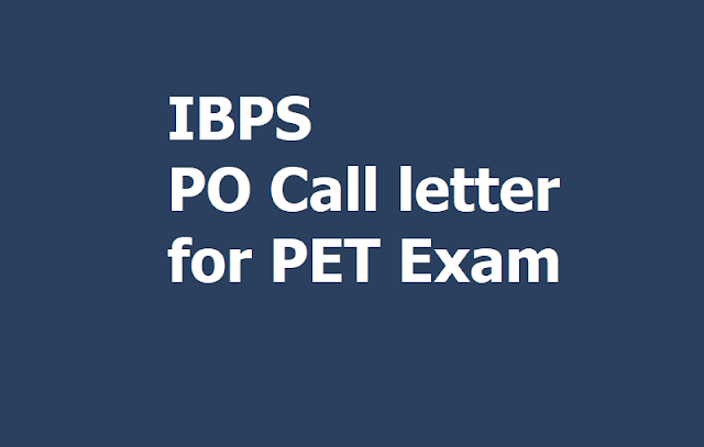 IBPS PO Call letter 2019 for PET Exam, How to Download