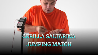 Cerilla saltarina, MAGIC TRICK, Jumping match