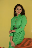 Geethanjali in Green Dress at Mixture Potlam Movie Pressmeet March 2017 019.JPG
