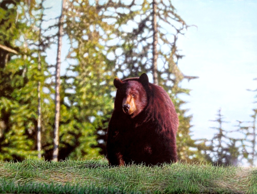 02-Brown-Bear-Nick-Sider-Realistic-Animal-Paintings-more-than-a-Photo-Image-www-designstack-co