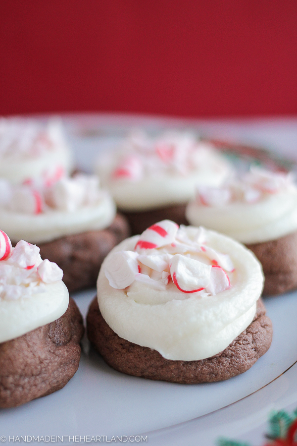 Easy frosted chocolate Christmas cookies