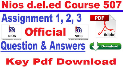 nios d.el.ed assignment answer hindi 2018