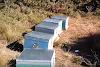 Πανεύκολη πατέντα για ξεχειμώνιασμα για να μένουν ζεστά τα μελισσια BINTEO