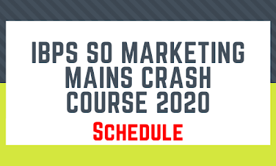 IBPS SO Marketing Mains Crash Course: Schedule