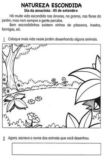 Dia Da Amazonia Desenhos E Atividades Para Colorir Imprimir Ii