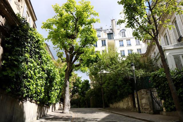 Gorgeous private secret Avenue Frochot in Paris