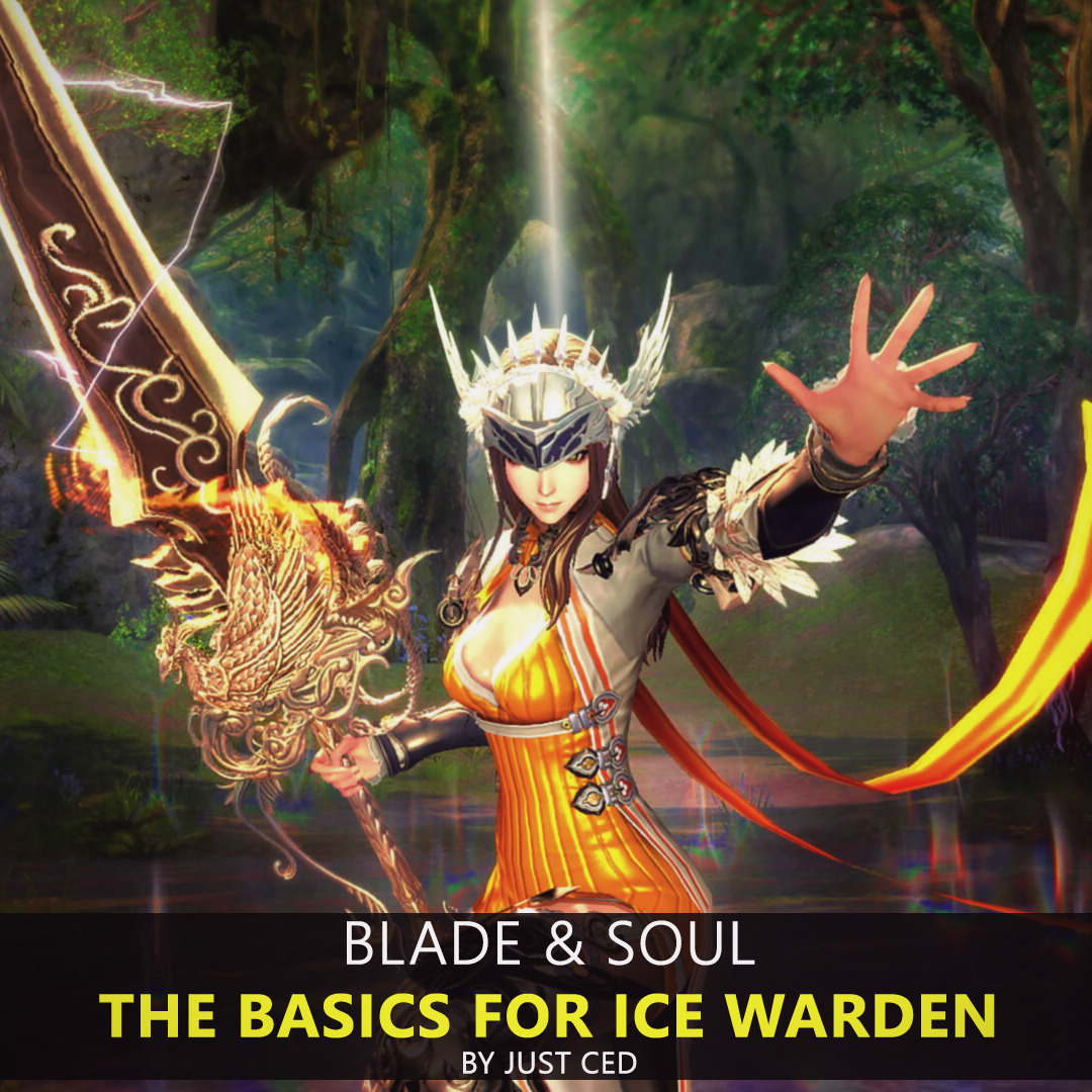 MIX: Blade & Soul | The Basics for Ice Warden by Just Ced