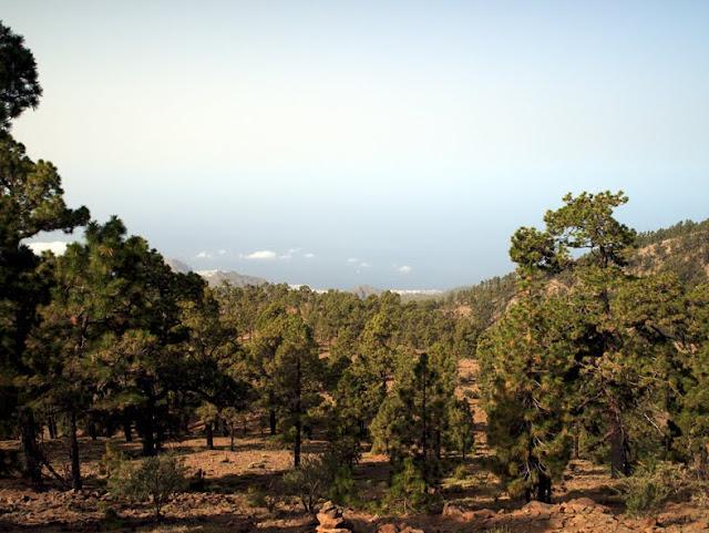 Vista Sur desde el sendero al Combrero de Chasna