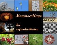Monatscollage: vom letzten Donnerstag jeden Monats bis zum ersten Freitag des neuen Monats