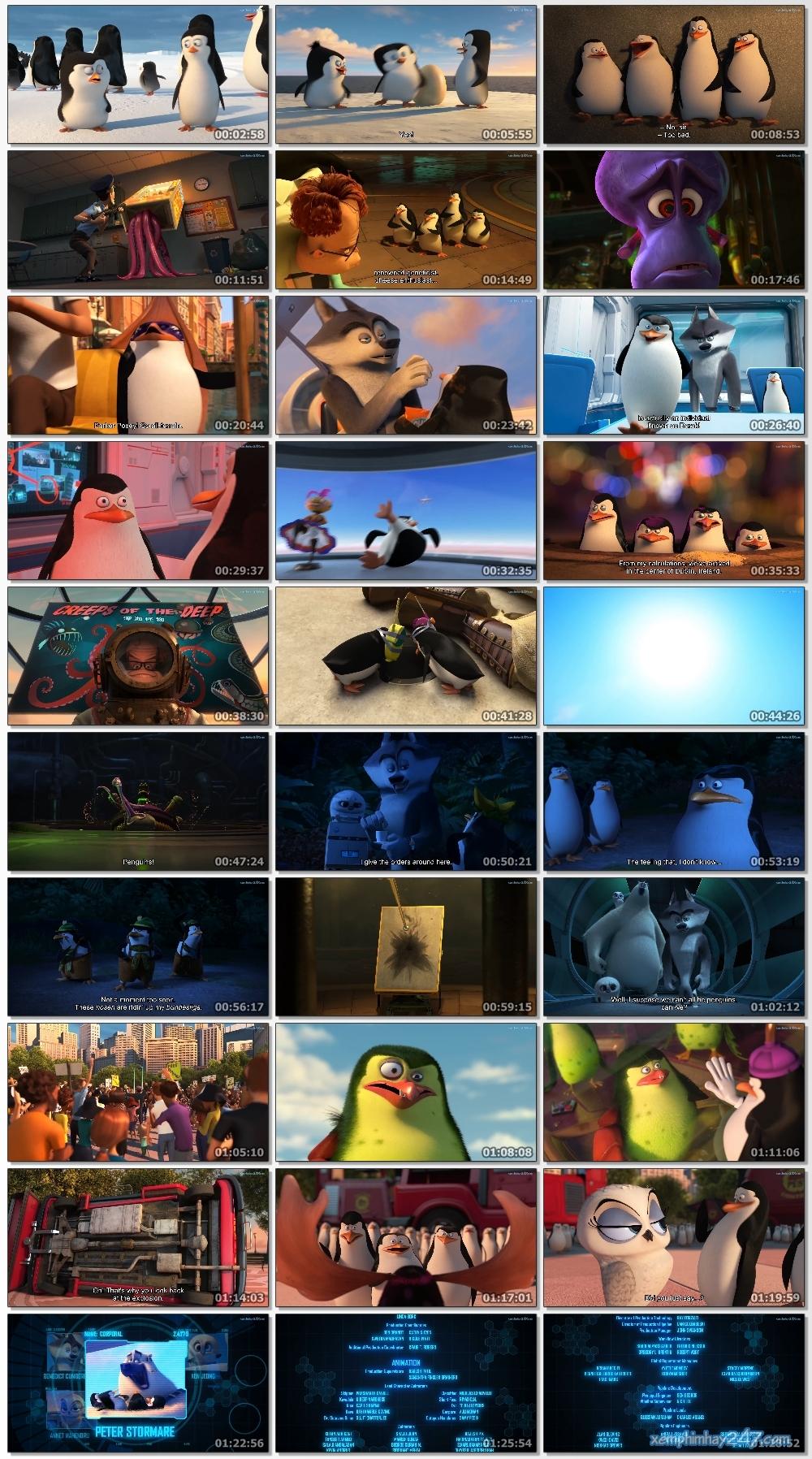 http://xemphimhay247.com - Xem phim hay 247 - Biệt Đội Chim Cánh Cụt Vùng Madagascar (2014) - The Penguins Of Madagascar (2014)