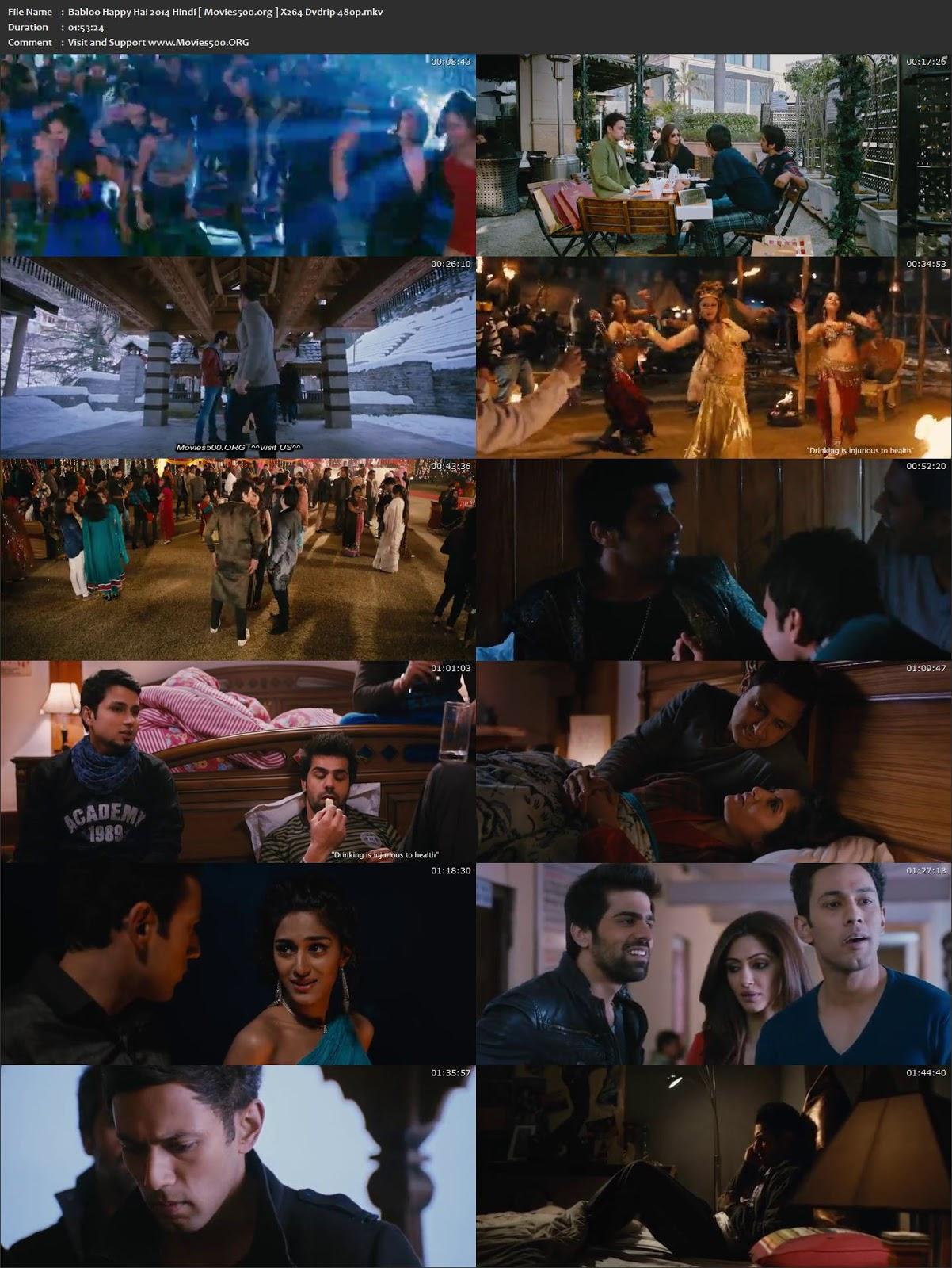 Babloo Happy Hai 2014 Full 300MB Hindi DVDRip 480p at movies500.site