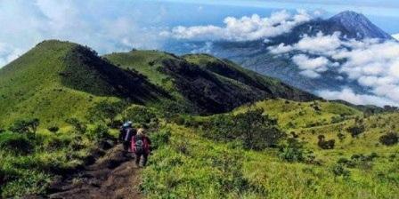 Permalink ke Ingin Menjelajah Alam Bebas Jangan Lupa Barang Berikut