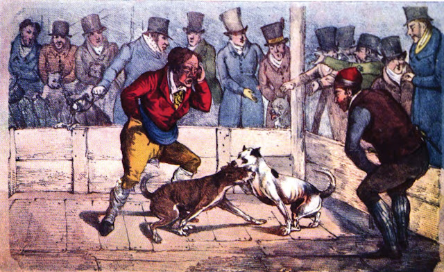 Dog Law Reporter: The Sordid History of Pit Bull Fighting ...