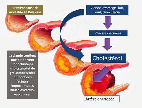 Le cholestérol et les maladies coronariennes , Quels sont les avantages de réduire le cholestérol ?