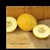 Dưa lưới Sensation ( CUC00165).Sensational Melon,Cucumis melo