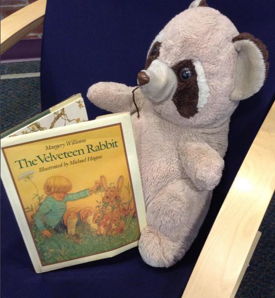 The Tie Dyed Librarian Velveteen Rabbit Read Aloud
