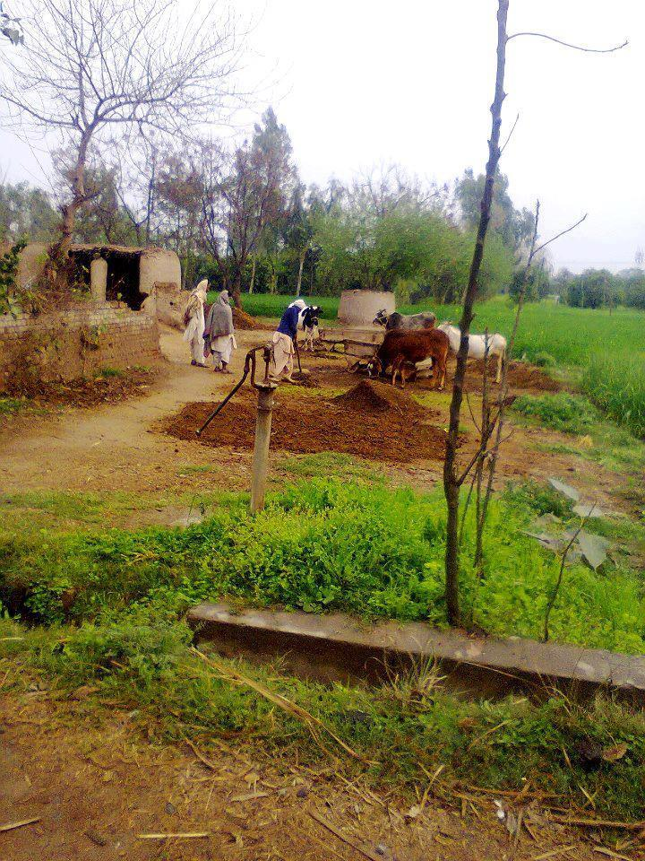 Easy essay on village life in pakistan - Free Essay: LIFE IN
