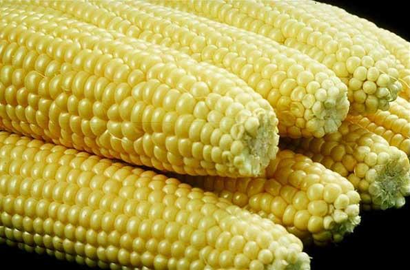 Manfaat jagung untuk kecantikan