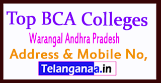 Top BCA Colleges in Warangal Andhra Pradesh