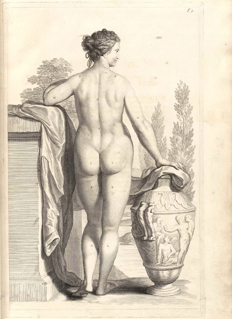 Govert Bidloo - tavola anatomica - nudo femminile - incisione