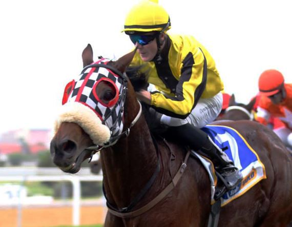 Solid Speed - Vodacom Durban July - Trained by Dean Kannemeyer