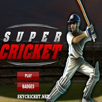 Play Super Cricket Game