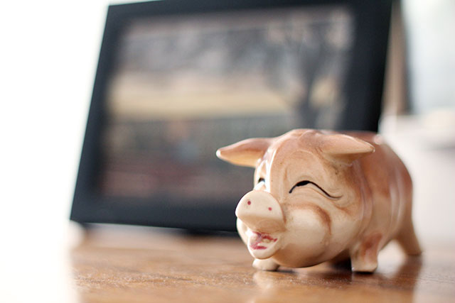 Our Minneapolis Apartment: Ceramic pig