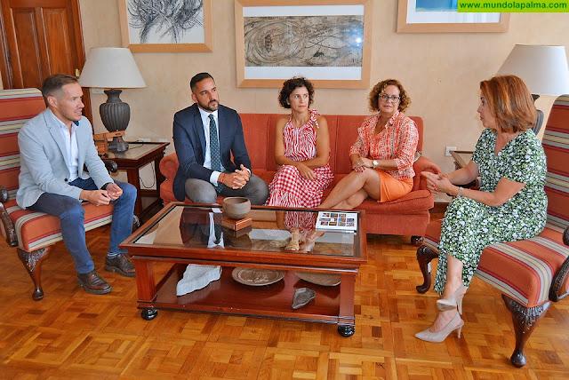 El Cabildo mantiene una primera toma de contacto con la consejera de Sanidad del Gobierno de Canarias