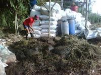 Cara Membuat Pupuk Organik dari Limbah Kotoran Kambing