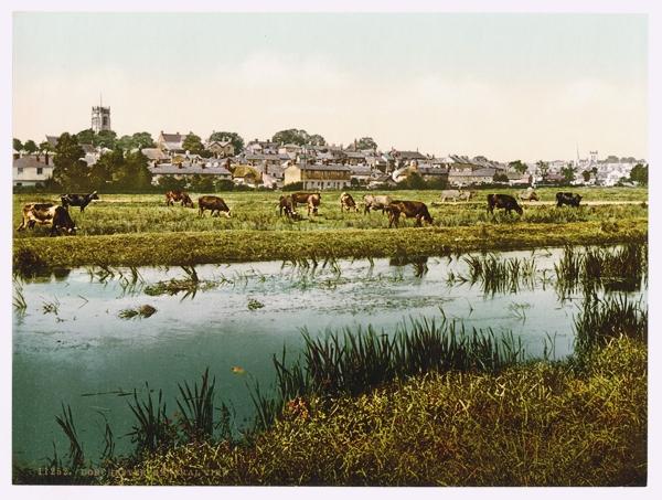Dorchester-Anglia-oras-Doreset-turism-am-fost-acolo