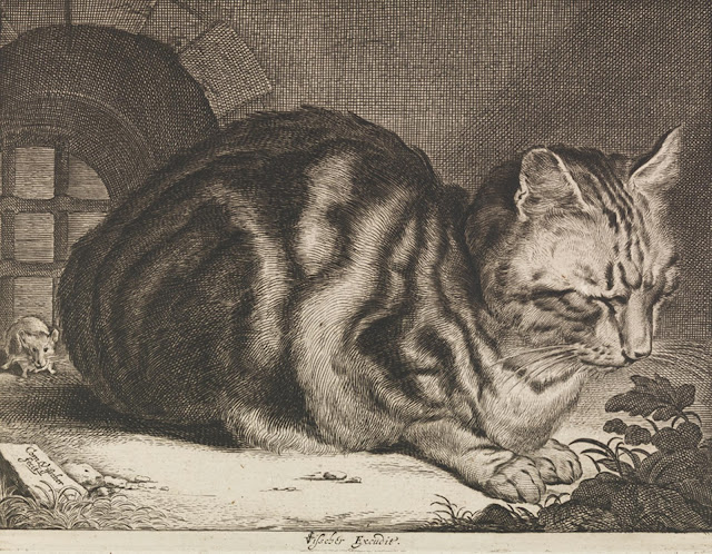http://dcdocent.tumblr.com/post/5839135966/cornelis-viccher-the-large-cat-1657-dutch