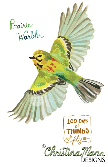 Prairie Warbler in Flight. Gouache by Christina Mann Designs