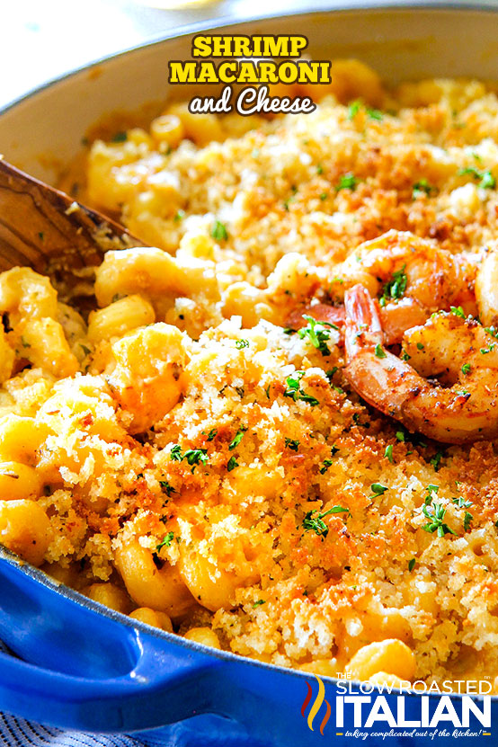 https://www.theslowroasteditalian.com/2018/07/shrimp-macaroni-and-cheese-recipe.html