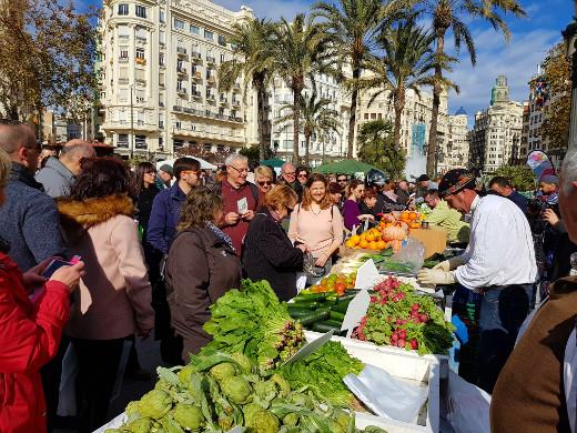 Cebrián defensa la recuperació de L'Horta com a espai viu amb garantia de futur per als que viuen i treballen en ella