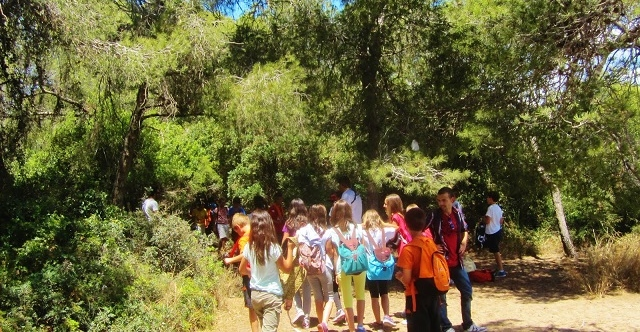 Excursión Parque Natural del Turia: Bosque y río