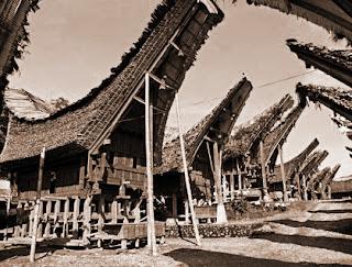 Keunikan Sejarah Rumah Adat tradisional Tongkonan Tana Toraja Sulawesi Selatan Tempat Wisata Keunikan Sejarah Rumah Adat tradisional Tongkonan Tana Toraja Sulawesi Selatan