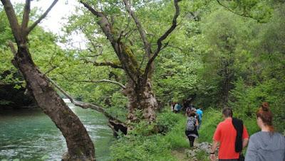 Εθελοντικό Πρόγραμμα του Εθνικού Πάρκου Βόρειας Πίνδου ανοίγει μουσεία και βιβλιοθήκες της προστατευόμενης περιοχής