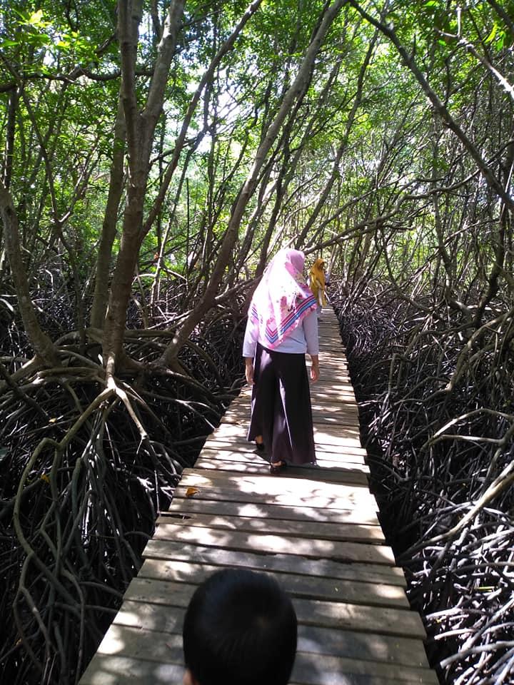 Liburan Di Ekowisata Mangrove Bali