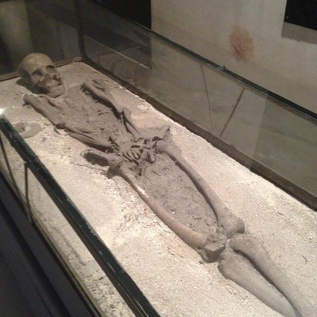 500-year old skeletal remains