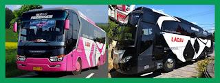 Bus pariwisata Ladju dan Travel Ladju Trans