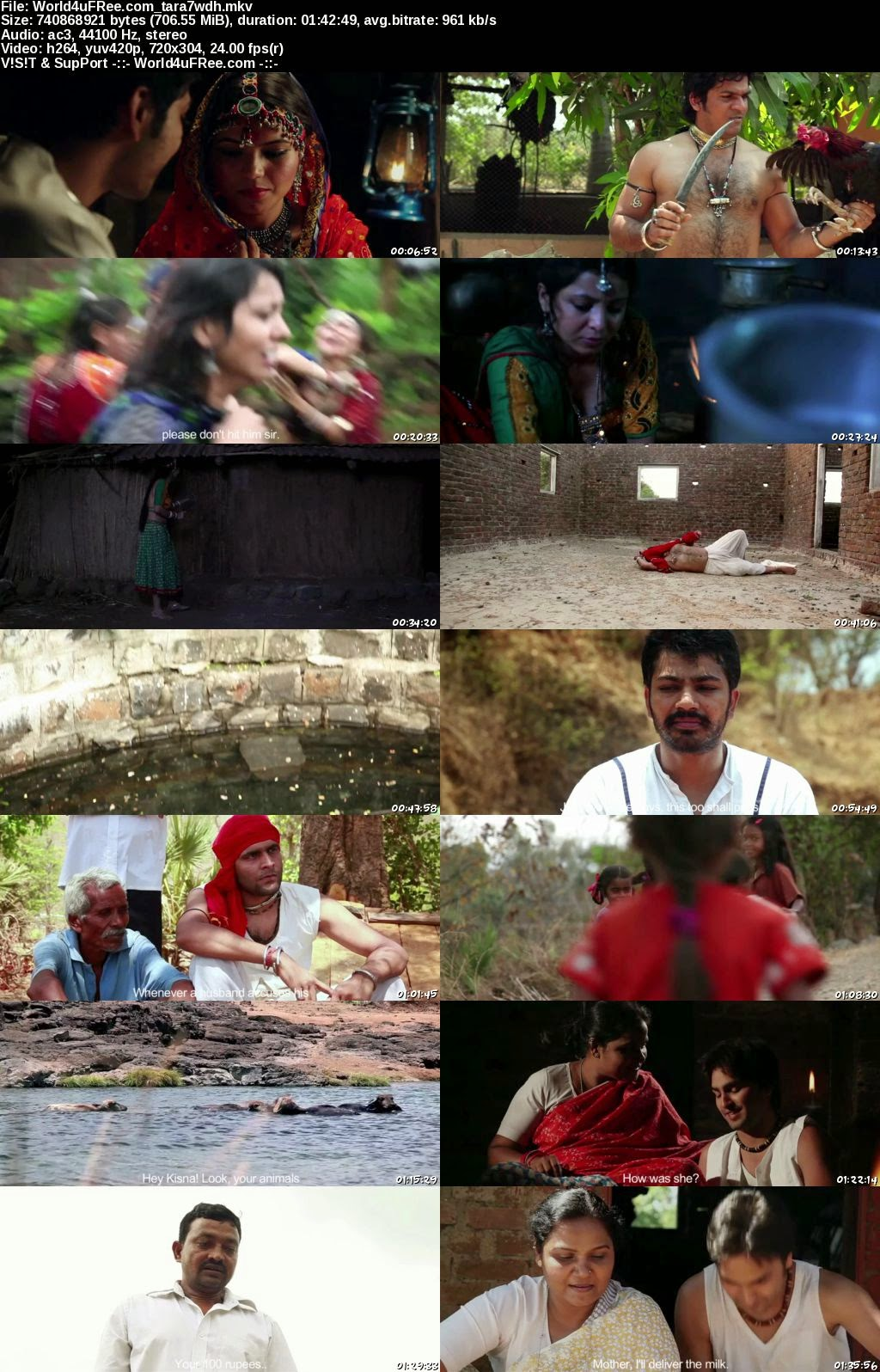 Tara The Journey of Love and Passion 2013 Hindi Movie Download / Online In 300MB at moviesmella.com