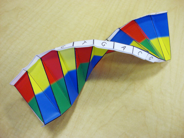 DNA origami ~ Health Matters Today! - photo#7