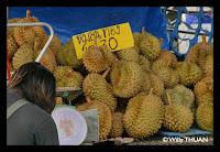 Durian [Tu Rean - ทุเรียน]