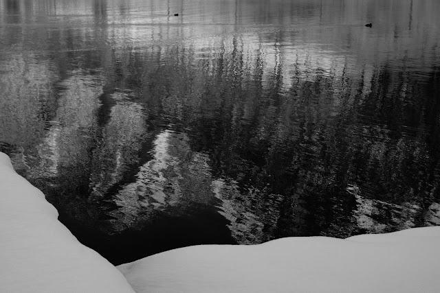 Kraina śniegu. Obertraun, Hallstat, Austria. Koncepcyjna fotografia krajobrazu. Czarno-biała fotografia odklejona. fot. Łukasz Cyrus