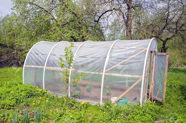 วิธีทำสวนผักแบบปิด