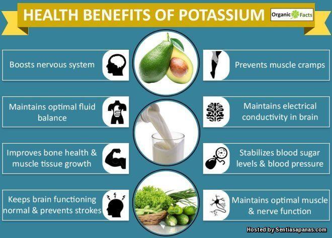 Apa Itu Potassium