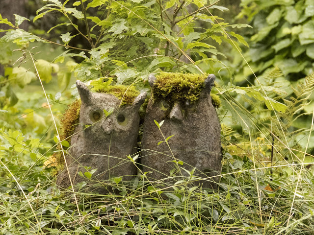 Mossy owls at the Parikkala Sculpture Park roadside attraction in Finland