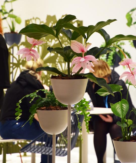 Pots planteringskärl av Broberg & Ridderstråle för Nola | www.var-dags-rum.se