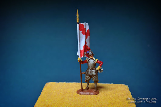 TYW - Imperial Standard bearer - finished