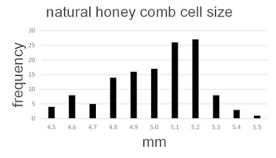 bee, beekeeping, honey comb, natural cell size, SimpleCV,